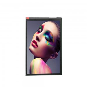 TFT 10.1 inch high resolution 1200*1920 MIPI interface FHD lcd advertising display panel