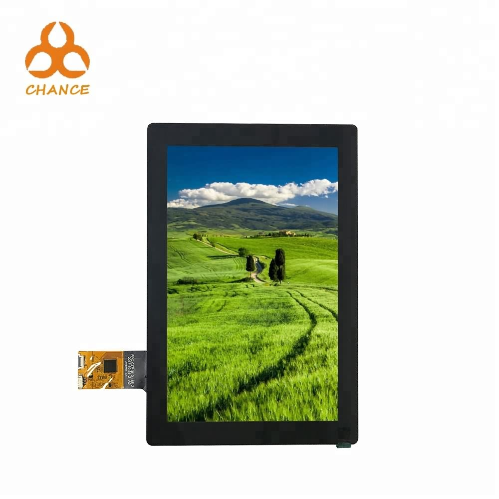 10 inch 800*1280 MIPI flexible transparent oem ips tft lcd display with capacitive touch panel