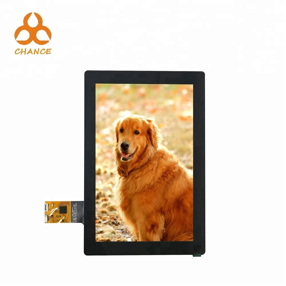 With capacitive touch panel 10.1 inch lcd 800*1280 MIPI transparent graphic high resolution tablet HMI screen ips tft lcd module